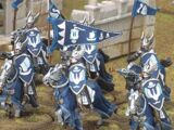 Knights of Dol Amroth