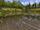 Wasserauer See