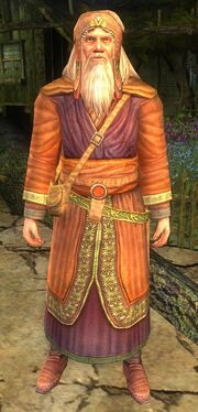 The Lord of the Rings Online - Radagast