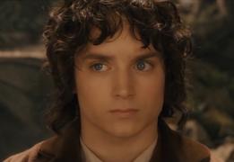 Frodo DP