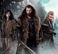 The Hobbit wallpaper 60