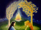 Drzewa Valinoru