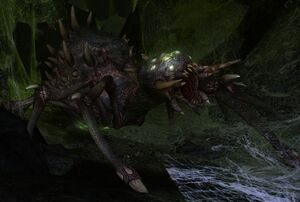 The Lord of the Rings Online - Shelob