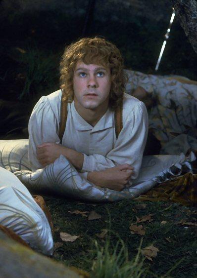 Frodo · Sam · Merry · Pippin · Gandalf · Aragorn · Legolas · Gimli · Boromir