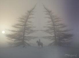 Zima na Północnych wzgórzach