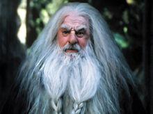 Gloin u Elronda