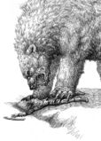 Beorn by moth eatn
