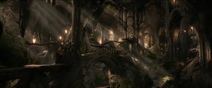 Leśne Królestwo
