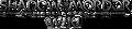 SoM Wiki-wordmark
