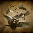 Cave bats 2