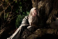 The Hobbit (film series) - Gandalf the Grey