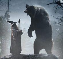 Gandalf and Beorn