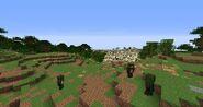 South Gondor Beta29 13