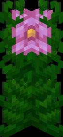 HIbiscusLysurus3D