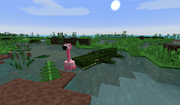 Far Harad Swampland - Flamingo facing a difficult choice