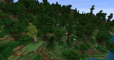 Rhûn Forest