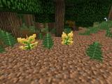 Huorn Leaf