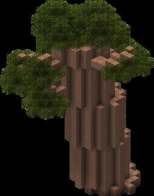BaobabTree
