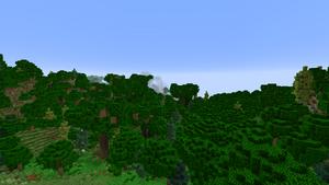 A dense oak forest