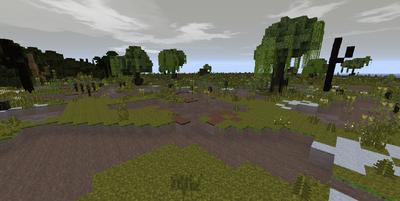 Nurn Marshes