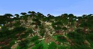 South Gondor Beta29 8
