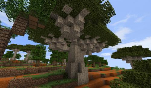 Huge Dragonblood Tree
