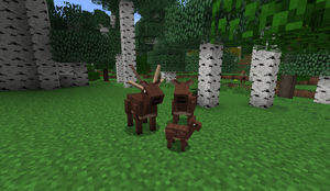 Deer family Aww B27