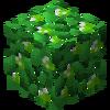 LeavesLime