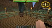 A baby boar