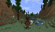 Player riding Wild Boar