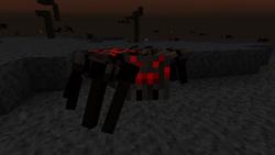 Mordor-Spinne