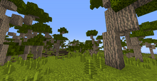 KanukaForest