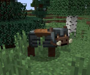 Dwarven Armour Boar