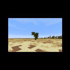 Одинокое дерево в степи