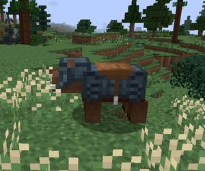 Blue Dwarven Boar Armour
