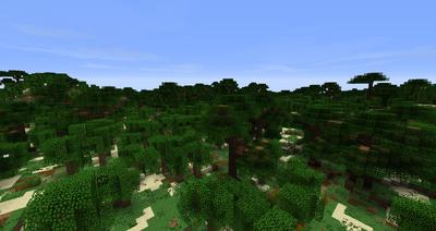 Umbar Forest