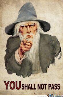 Gandalf-told-you o 342674