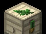 Mallorn Box