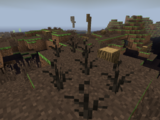 Dead Marsh Plant
