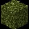 LeavesDragonblood