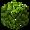LeavesMahogany