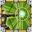 Explosive Arrow-icon