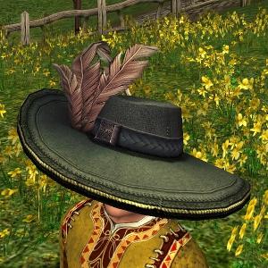 Fancy Plumed Hat hobbit sample