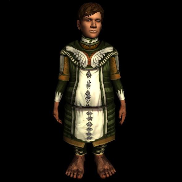 Mariner's Hauberk hobbit new