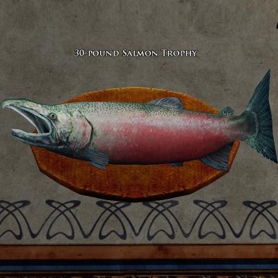 30 pound salmon trophy s