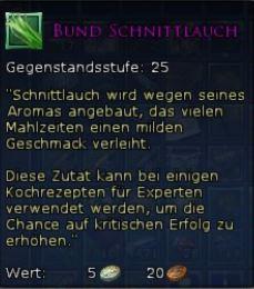 Bund Schnittlauch