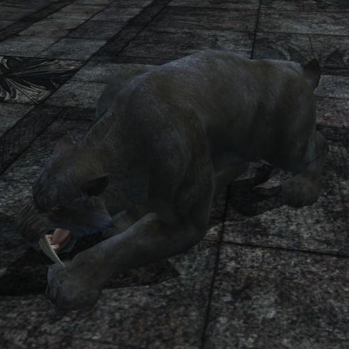Improved Friend of Feline Hunters (Onyx Sabercat)