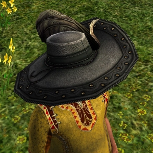 Elegant Plumed Hat hobbit sample2