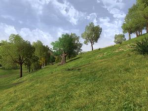 Northern Bree-fields