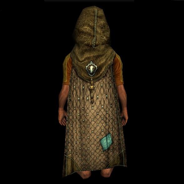 Hooded Cloak of the Inn League hobbit